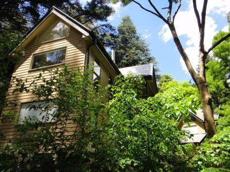 Treetops Guesthouse - Lochiel Luxury Accommodation