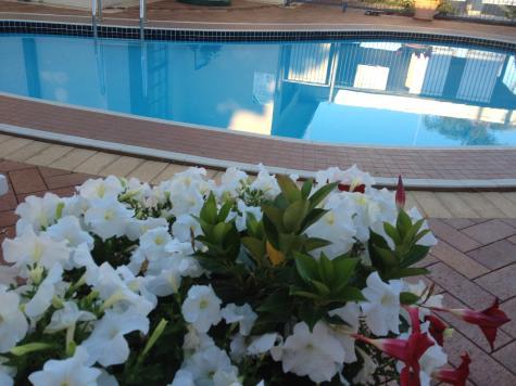 Pool area - Main Street Motel Hervey Bay